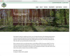 Toxigone home page header